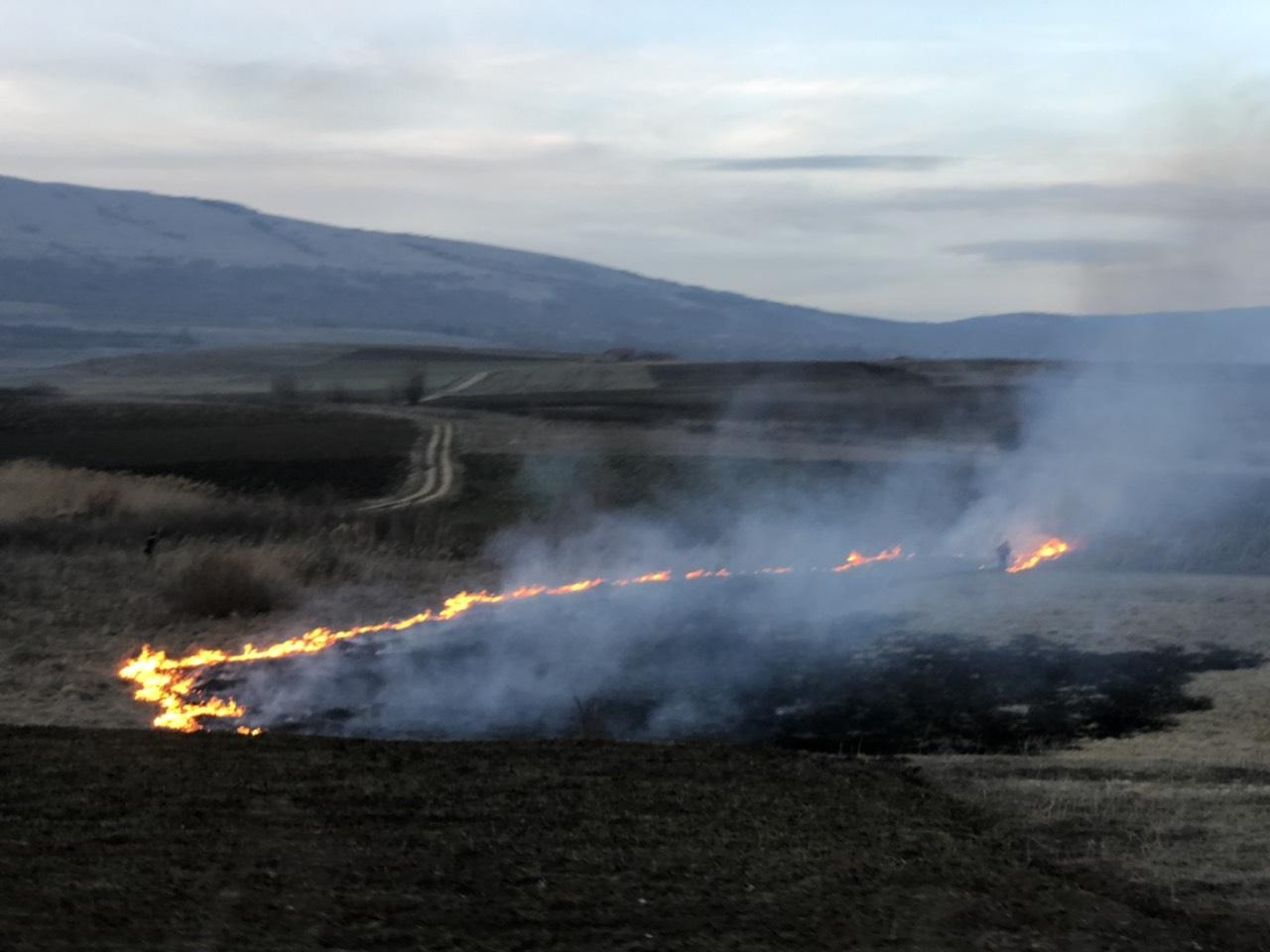 Пожар на отовреном, фото: М.Миладиновић, портал ,,Нишке новине''